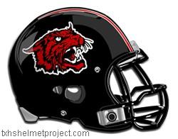The Wildcat is our school mascot